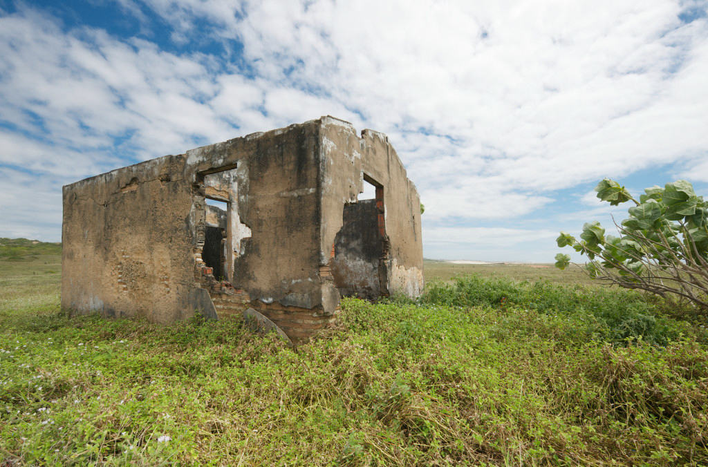 Ruins of an abandoned house - among bushes, grass and flowers - near the coastline of Brazil.